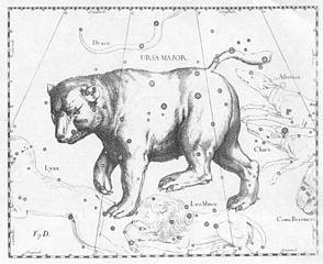 Ursa Major van buitenaf - Johannes Hevelius, 17e eeuw